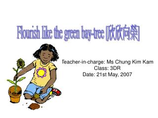 Teacher-in-charge: Ms Chung Kim Kam Class: 3DR Date: 21st May, 2007