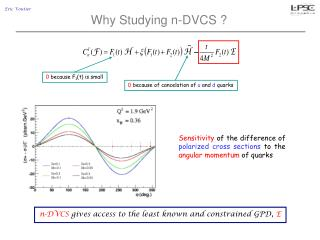 Why Studying n-DVCS ?
