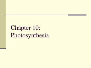 Chapter 10: Photosynthesis
