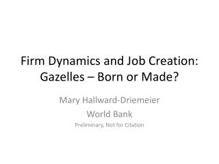 Firm Dynamics and Job Creation: Gazelles – Born or Made?