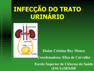 INFEC  O DO TRATO URIN RIO