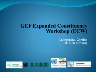 GEF Expanded Constituency Workshop (ECW)
