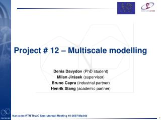 Project # 12 – Multiscale modelling