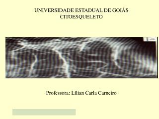 UNIVERSIDADE ESTADUAL DE GOI S CITOESQUELETO            Professora: L lian Carla Carneiro