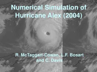 Numerical Simulation of Hurricane Alex (2004)