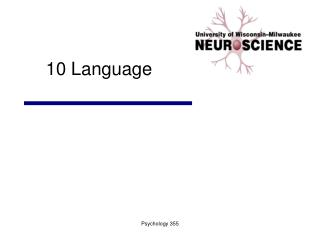 10 Language