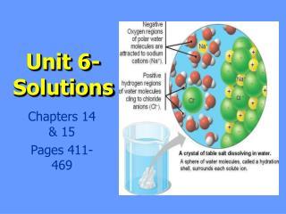 Unit 6- Solutions