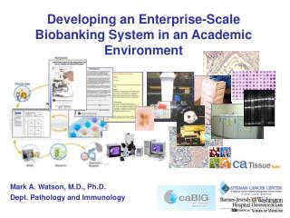 Developing an Enterprise-Scale Biobanking System in an Academic Environment