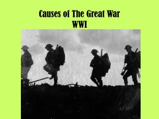 Causes of The Great War WWI