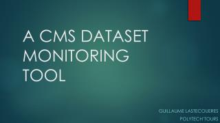 A  CMS DATASET  MONITORING TOOL