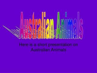 Here is a short presentation on Australian Animals
