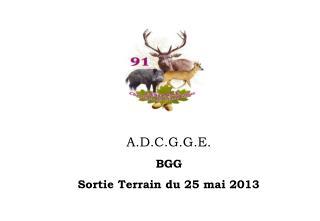 A.D.C.G.G.E. BGG  Sortie Terrain du 25 mai 2013
