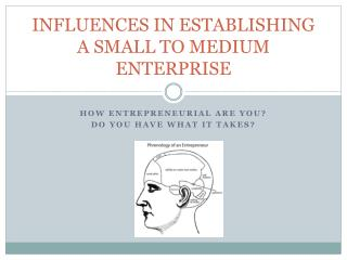 INFLUENCES IN ESTABLISHING A SMALL TO MEDIUM ENTERPRISE