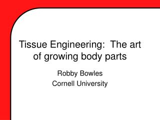 Tissue Engineering:  The art of growing body parts