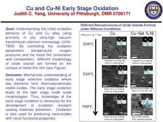 Different Nanostructures of Oxide Islands Formed under Different Conditions