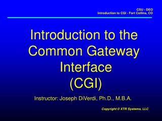 Introduction to the  Common Gateway  Interface (CGI)