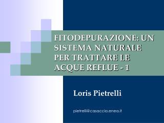 FITODEPURAZIONE: UN SISTEMA NATURALE PER TRATTARE LE ACQUE REFLUE - 1