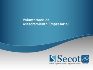 Voluntariado de Asesoramiento Empresarial