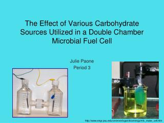 The Effect of Various Carbohydrate Sources Utilized in a Double Chamber  Microbial Fuel Cell