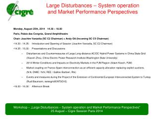 Large Disturbances – System operation and Market Performance Perspectives