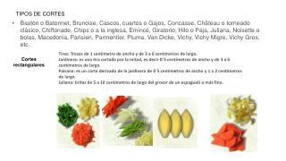 TIPOS DE CORTES