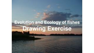 Evolution and  Ecology  of fishes Drawing Exercise