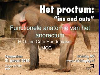Functionele anatomie van het anorectum