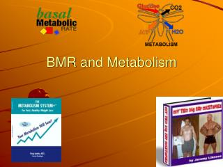 BMR and Metabolism