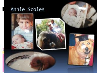 Annie  Scoles