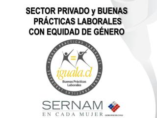 SECTOR PRIVADO y BUENAS  PRÁCTICAS LABORALES  CON EQUIDAD DE GÉNERO