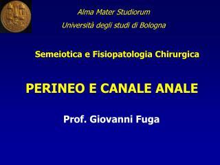 Alma Mater Studiorum Università degli studi di Bologna