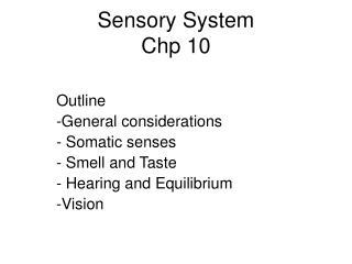 Sensory System  Chp 10