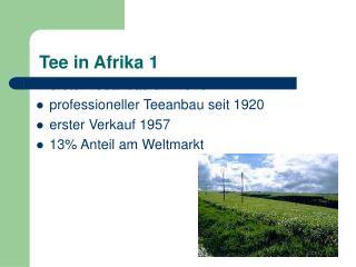 Tee in Afrika 1