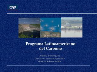 Programa Latinoamericano del Carbono