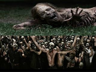 Mr. Zwirn's Social Studies 8 Black Death Survival Guide
