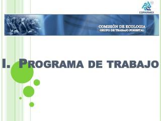 I.  Programa de trabajo
