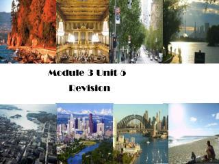 Module 3 Unit 5         Revision