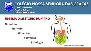 Definição           Nutrição                   Alimentos                            Anatomia