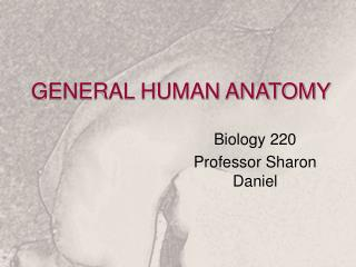 GENERAL HUMAN ANATOMY