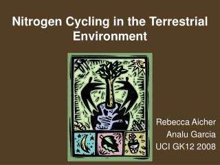 Nitrogen Cycling in the Terrestrial Environment
