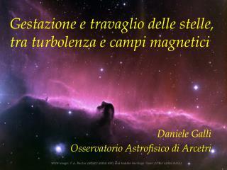 Gestazione e travaglio delle stelle, tra turbolenza e campi magnetici