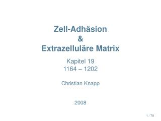 Zell-Adh�sion & Extrazellul�re Matrix
