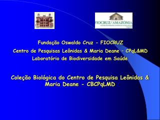 Fundação Oswaldo Cruz - FIOCRUZ