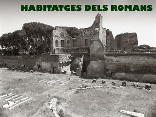 HABITATGES DELS ROMANS