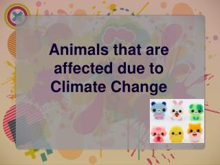 Animals that are affected due to Climate Change