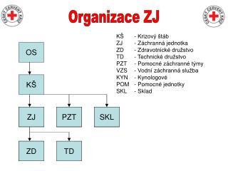 Organizace ZJ