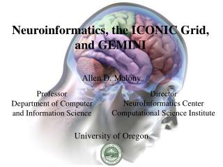 Neuroinformatics, the ICONIC Grid, and GEMINI