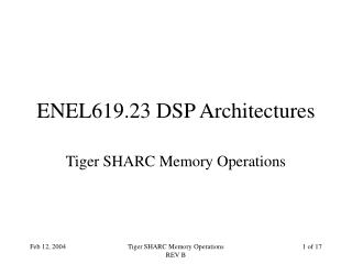 ENEL619.23 DSP Architectures