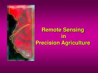 Remote Sensing  in  Precision Agriculture