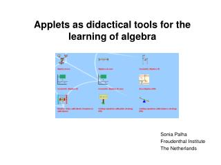 A pplets as didactical tools for the learning of algebra